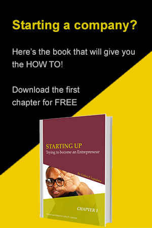 Download PC Lepulana's Book: Starting Up - Trying to become an Entrepreneur